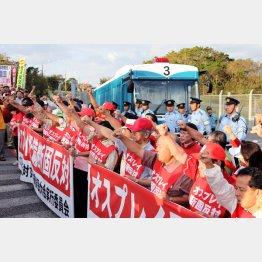 政府は沖縄県民を無視し実力行使(C)日刊ゲンダイ