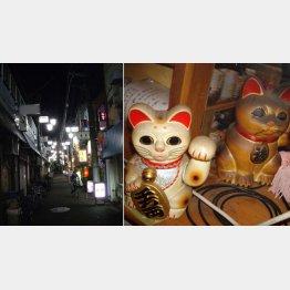 """奥へ進むといきなり寂しげな雰囲気に(左)、裕次郎を""""見た""""招き猫"""