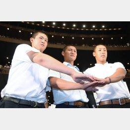 左から花咲徳栄・高橋昂也、履正社・寺島、横浜高校・藤平の「高校ビッグ3」/(C)日刊ゲンダイ