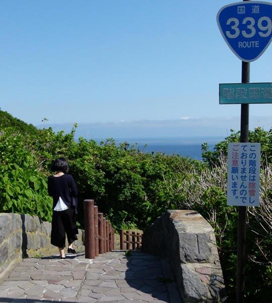 マニアに知られた階段国道(提供写真)