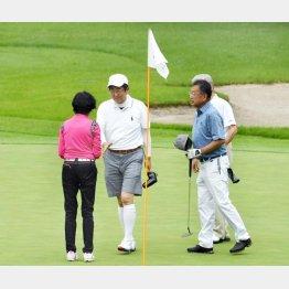 夏休み後半もゴルフ三昧(C)日刊ゲンダイ