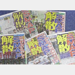 国民的グループの解散は芸能界総ぐるみの暗闘へ?(C)日刊ゲンダイ