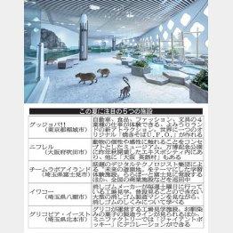 異色のミュージアム「ニフレル」(提供写真)