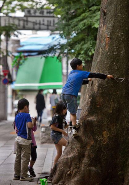 最近は都内でも自然に生息(C)日刊ゲンダイ