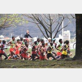 リオ男子マラソンは佐々木16位、石川36位、北島94位に終わった