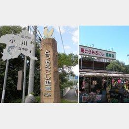 わずか5キロのミニ街道(C)日刊ゲンダイ