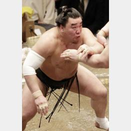 横綱日馬富士は137キロ