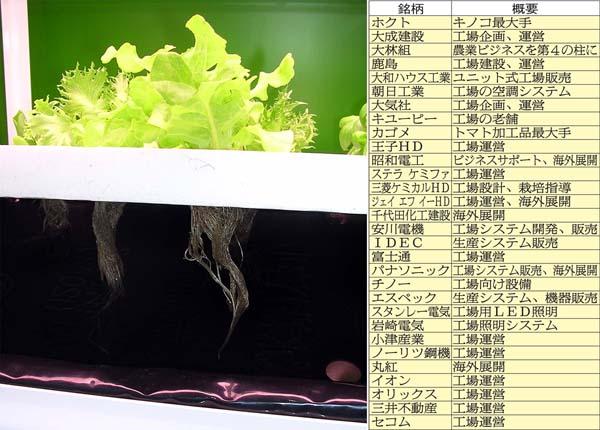 植物工場関連銘柄(C)日刊ゲンダイ