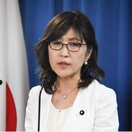 稲田防衛相の総資産は1億8178万円(C)日刊ゲンダイ