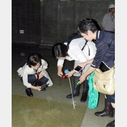 汚染水が2000トン(日本共産党都議団撮影)