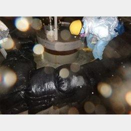 地下水ドレン観測井での作業(東京電力提供)