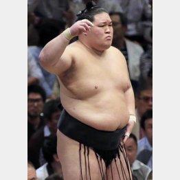 全勝の豪栄道は勢い任せ(C)日刊ゲンダイ