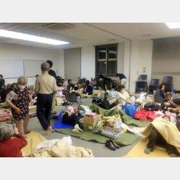 熊本地震からもうすぐ半年(C)日刊ゲンダイ