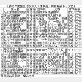 GPIF理事長の年収は3130万円!(C)日刊ゲンダイ
