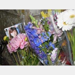 遺体が発見された現場付近に手向けられた花 (C)共同通信社