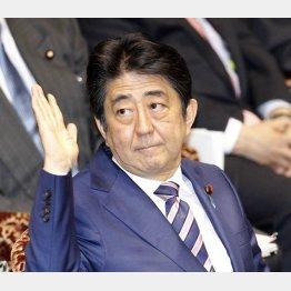"""得意技は""""野党攻撃""""(C)日刊ゲンダイ"""