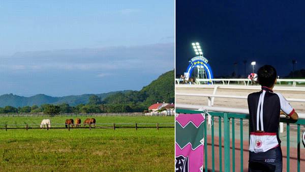 道からの眺めは爽快。奥は日高山脈・ホッカイドウ競馬開催中(門別競馬場)/(提供写真)