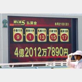「WIN5」の最高配当額は今年8月に出た4億2000万円