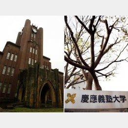 東京大学と慶應義塾大学(C)日刊ゲンダイ