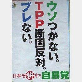 このポスターからしてウソだった(12年総選挙時の自民党ポスター)/(C)日刊ゲンダイ