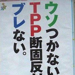 """国民の不安押さえつけ 非民主的に""""強行""""する国は日本だけ"""