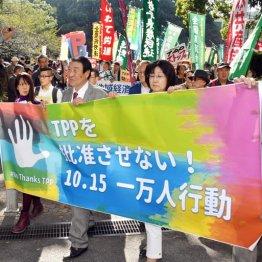 TPPのウソ<1>雇用増え賃金は上昇…7万4000人減の試算も