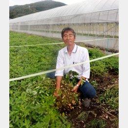美しさに魅せられ移住を決めた白田誠治さん(C)日刊ゲンダイ