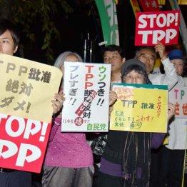 """TPPのウソ<6>数字増強""""ドーピング""""で大きな経済効果と喧伝"""
