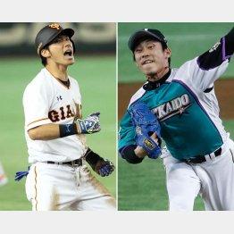 フリー打撃は世界一の巨人・大田、左は日ハム・吉川