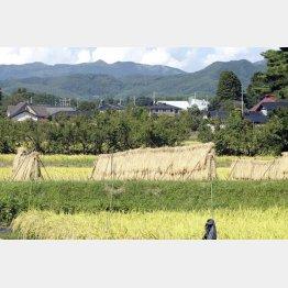 昔ながらの日本の田園風景も壊される(C)日刊ゲンダイ