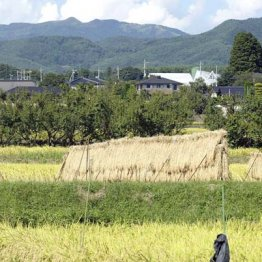 """TPPのウソ<11>国民の命の危機 食料は""""武器""""で標的は日本"""