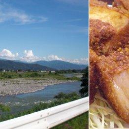 信州・天竜川どんぶり街道にはご当地丼の店が100店以上