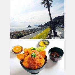 海沿いのサイクリングロード・ボリュームもある「食事処さくや」(C)日刊ゲンダイ