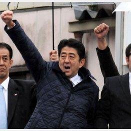 日米首脳会談が遊説代わり?(C)日刊ゲンダイ