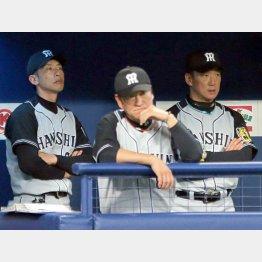 選手に厳しいビッグ3(C)日刊ゲンダイ