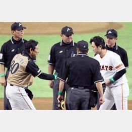 交流戦で握手する栗山監督(左)と高橋監督(C)日刊ゲンダイ