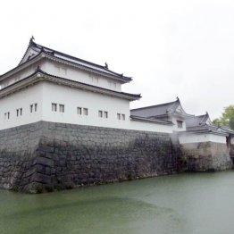 発掘調査に参加も 徳川家康が過ごした静岡県で歴史めぐり