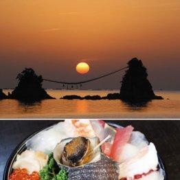 国内有数の漁場 大分県・豊後水道の海鮮丼を食らう