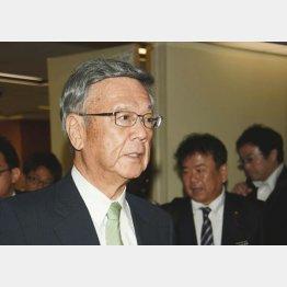 敗訴が確定した翁長知事(C)日刊ゲンダイ