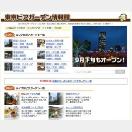 夏季限定だが、和田氏のサイトの稼ぎ頭(提供写真)