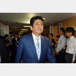 安倍首相をアイドル扱い(C)日刊ゲンダイ