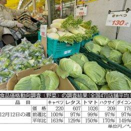 【野菜】天気次第。台風や日照不足があるとヤバイ
