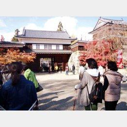 ポールを握って上田城へ(C)日刊ゲンダイ