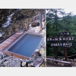 長野県、八ヶ岳の麓から徒歩で4時間(C)大原利雄