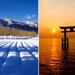 冬の琵琶湖畔に幻想的な風景とグルメが待つ「風車街道」