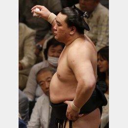 日馬富士の体重は幕内で3番目に軽い137キロ(C)日刊ゲンダイ