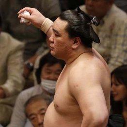 日馬富士の体重は幕内で3番目に軽い137キロ