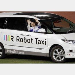 ロボットタクシーに乗る小泉進次郎議員(C)日刊ゲンダイ