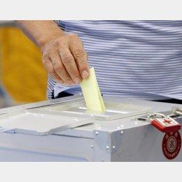 選挙が市場テーマに…(C)日刊ゲンダイ