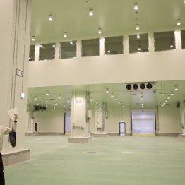 """福島原発事故や豊洲地下水汚染で""""御用学者""""が跋扈する日本"""